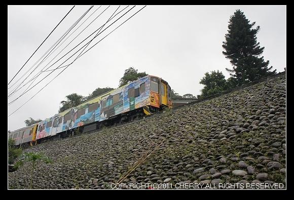 DSC03344